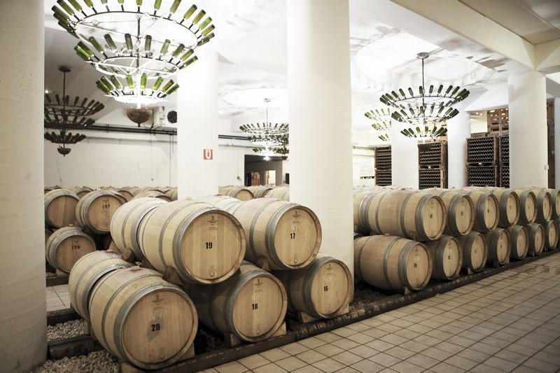 Wine tasting Tour in Nemea